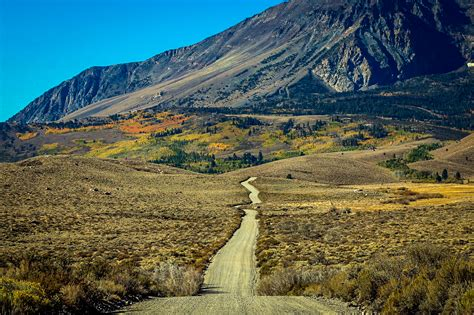 Peaking High in Mono County – Go Now! – California Fall Color