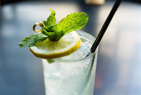 Simple Gin Drinks: Easy Cocktail Recipes With Just 3