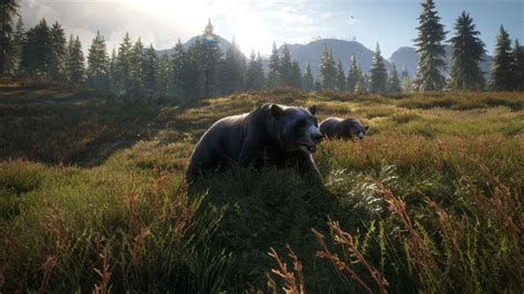 The Hunter Call of the Wild 2019 Edition on Xbox One