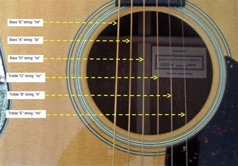 Learning all the notes in acoustic guitar | Acoustic