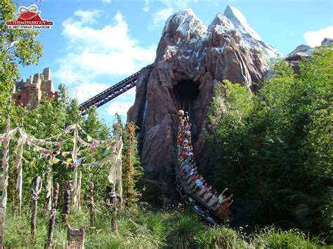 Disney's Animal Kingdom - photographed, reviewed and rated