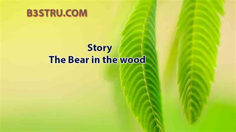 Write a story on the bear in the wood   B3STRU The Bear in